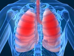 Lungs and Chest
